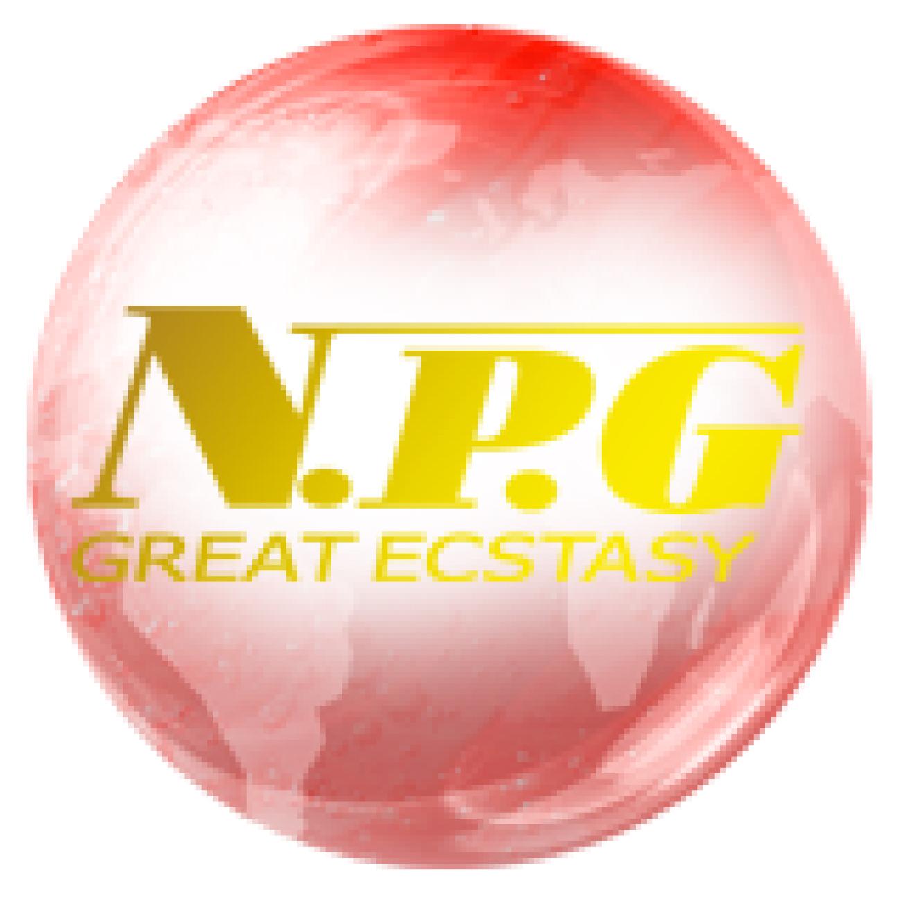 NPG(nipporigift)
