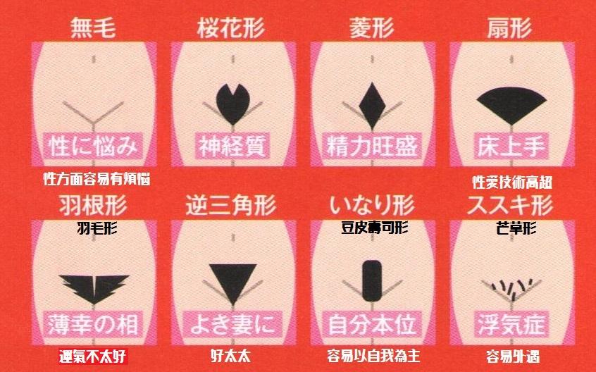 樣本數5000人! 日本 「陰毛學」 part.1